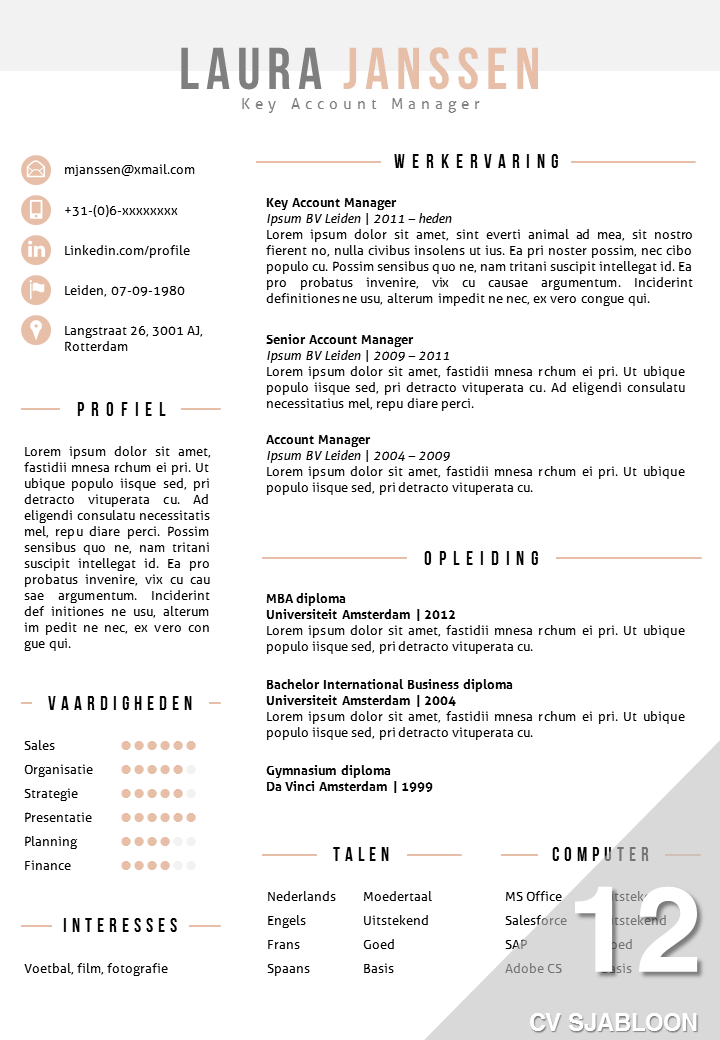 cv sjabloon 12 word en powerpoint template