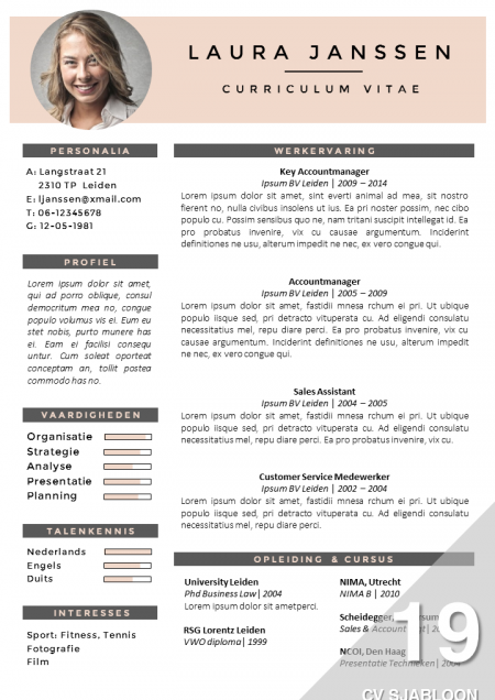 CV sjabloon 19