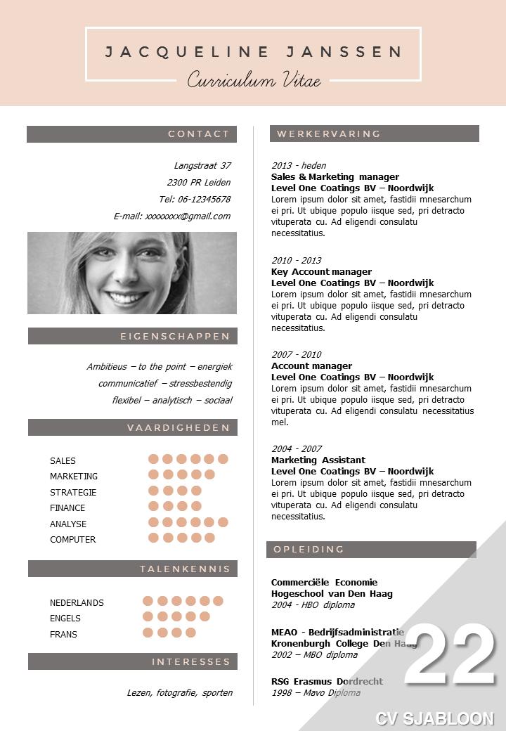CV Sjabloon 22: onderscheidend & professioneel