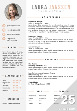 CV sjabloon / cv template