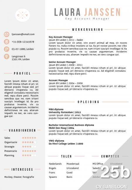 CV sjabloon Word 25b