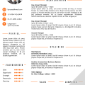 cv sjabloon / cv template 26
