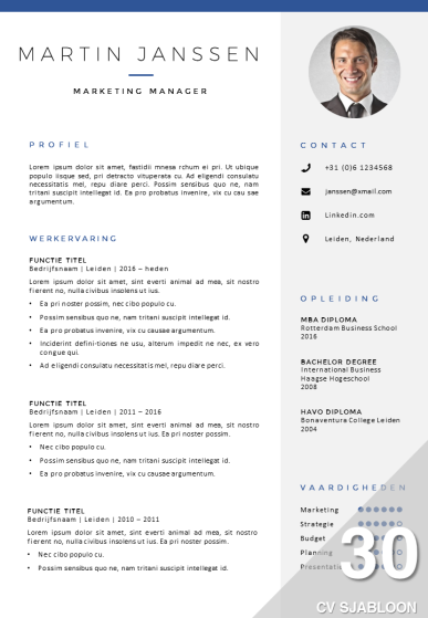 CV sjabloon in Word