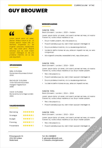 CV Template 18 Update