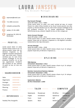 voorbeeld CV