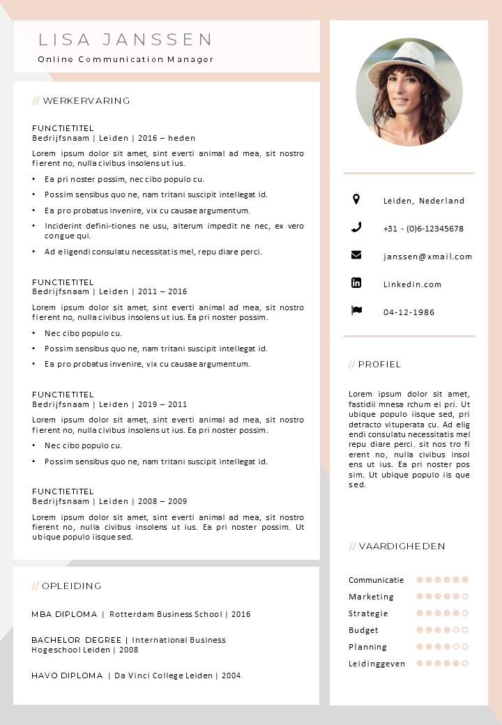 Voorbeeld CV 5 creatief