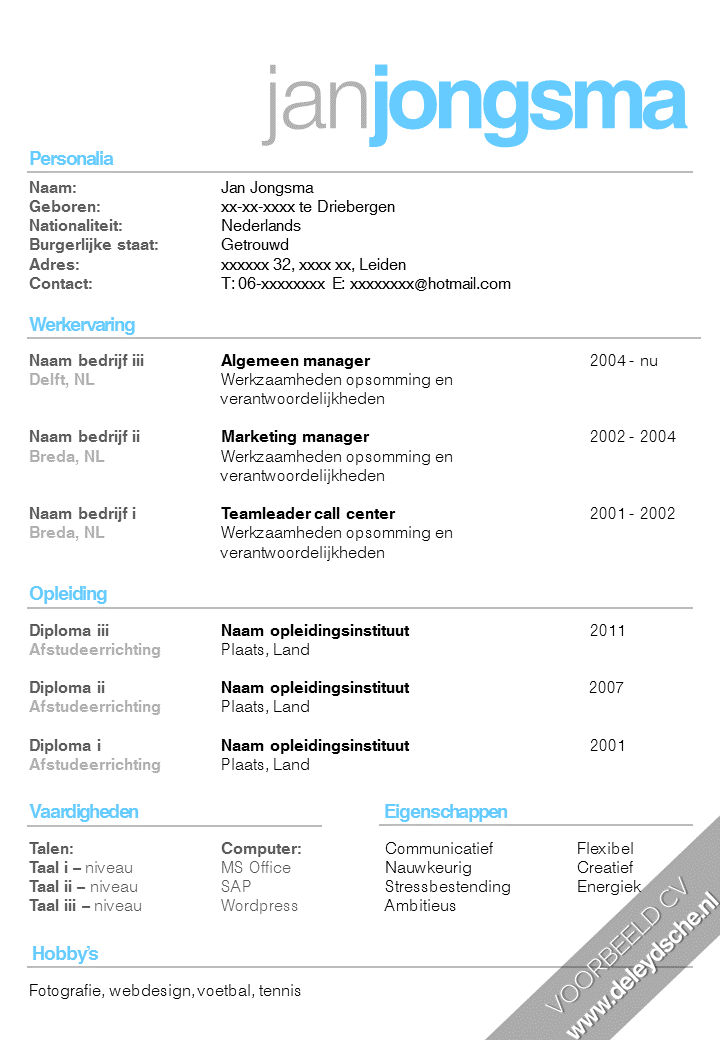 cv in word maken cv template nederlands word   Canas.bergdorfbib.co