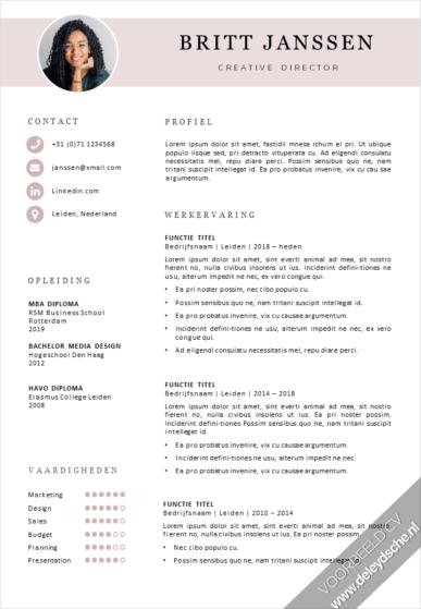 Voorbeeld CV Template 16